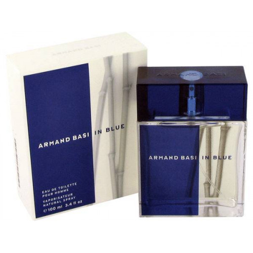 Armand Basi In Blue (EDT, 100ml, мужская)