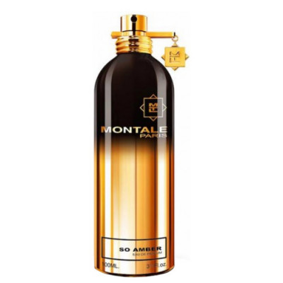 Montale So Amber (EDP, 100ml, женская)
